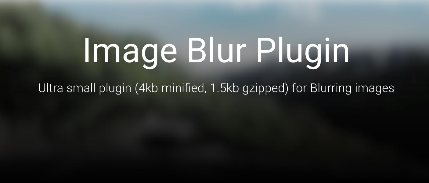 image-blur-plugin-2